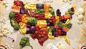 420-map-usa-food-diet.imgcache.rev1354251888118